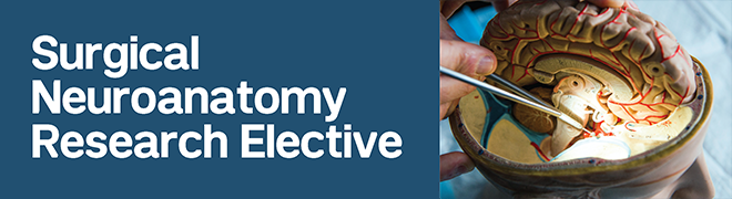 Surgical Neuroanatomy and Research Elective for Medical