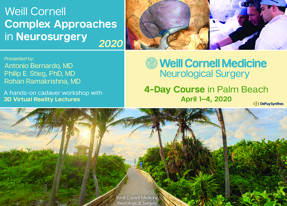 Palm Beach Course on Complex Approaches in Neurosurgery